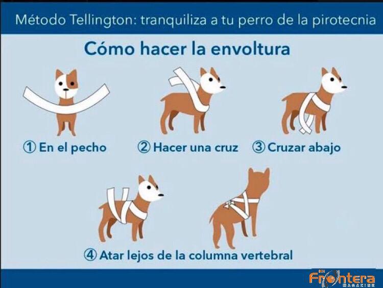 Cómo reducir el miedo a la pirotecnia en perros